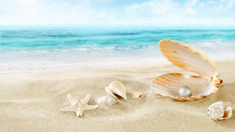 L'E.N.V.I.E. – Une Expérience de Conscience en vacances !